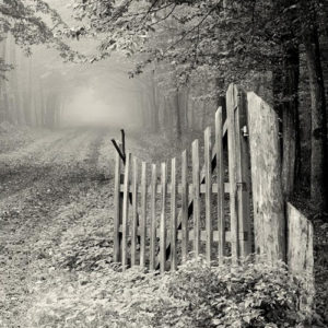 El cuarto portal - Fabiana Fondevila